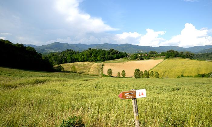terre-dei-pittori-700x420-4