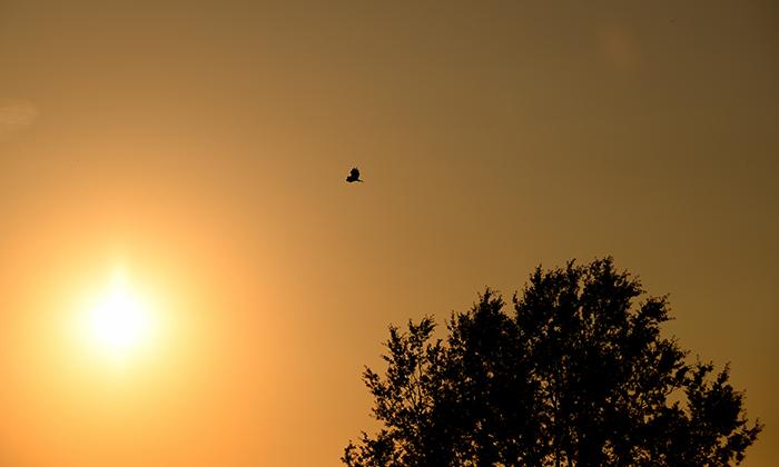 tramonto-itinerari-slide-700x420-3